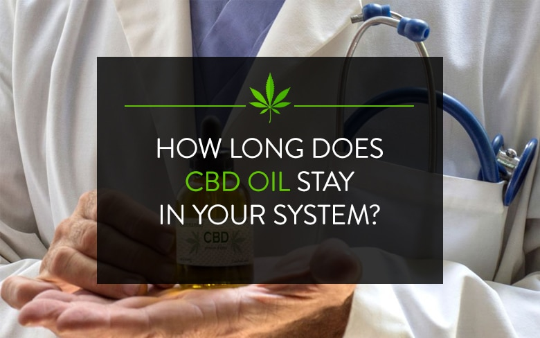 How Long Does CBD Oil Stay in Your System